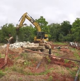 Eco Alliance Site Cleanup #3
